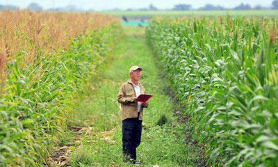 Изображение - О видах разрешенного использования земель сельхозназначения foto110-4