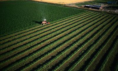 Изображение - О видах разрешенного использования земель сельхозназначения foto110-7