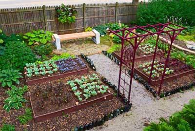 Какие садовотсва или огородничество надо