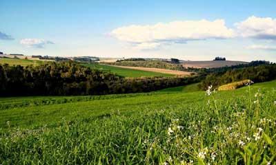 Обязательно ли межевание при продаже земельного участка