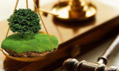 Правила проведения аукциона на право заключения договора аренды земли
