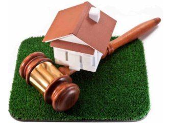 Как проводится аукцион по аренде земельных участков