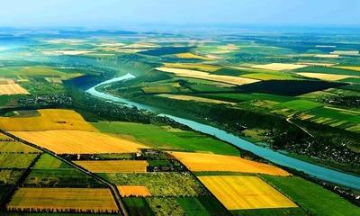 Как продать земельный участок быстро и выгодно без посредников процедура продажи земли сельхозназначения и ИЖС документы