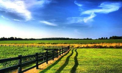 Договор купли продажи земельного участка — особенности составления