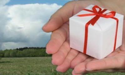 Образец договора дарения в простой письменной форме земельного участка