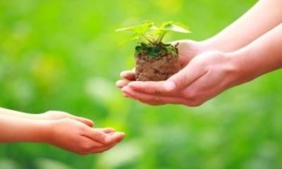 Дом оформлен а земля нет как оформить землю