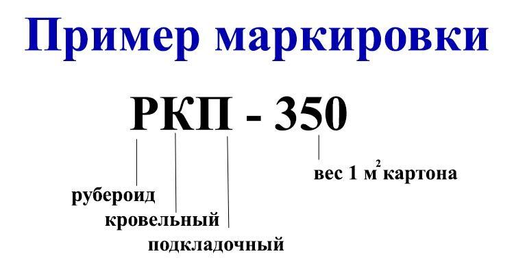 foto23375-5